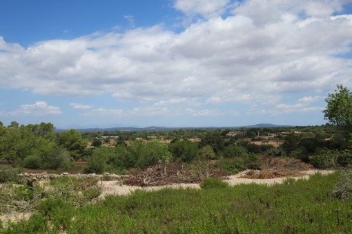 Wonderful building plot with project near Santanyi