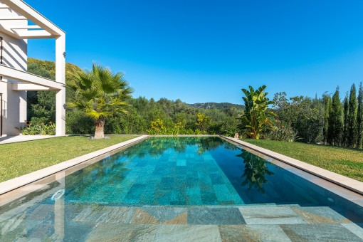 Pool with views to the green surroundings