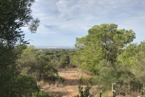 plot in Sa Cabaneta - Marratxi