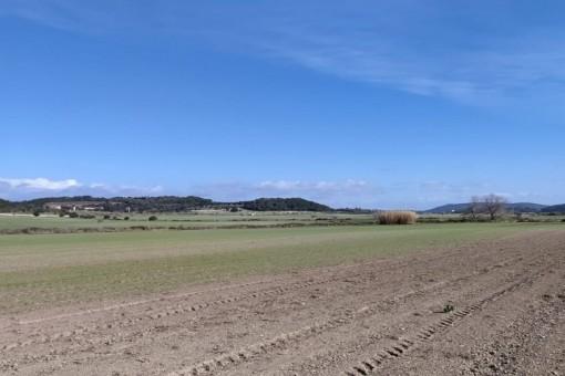 plot in Montuiri