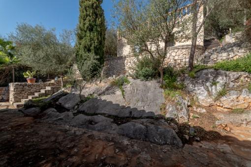 Exterior view and garden
