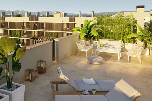 apartment in Palma Surroundings