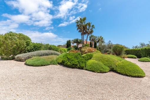 Beautifully landcsaped garden