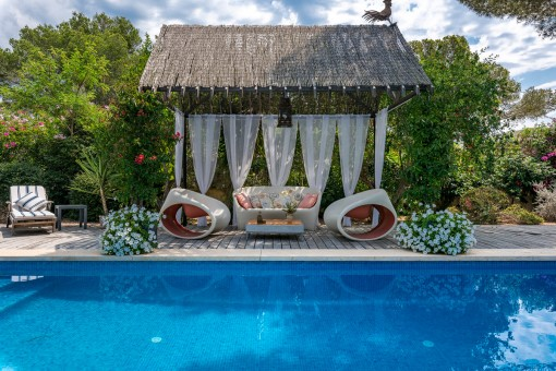 Pool and lounge area