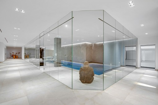 Elegant spa area and access to the garage