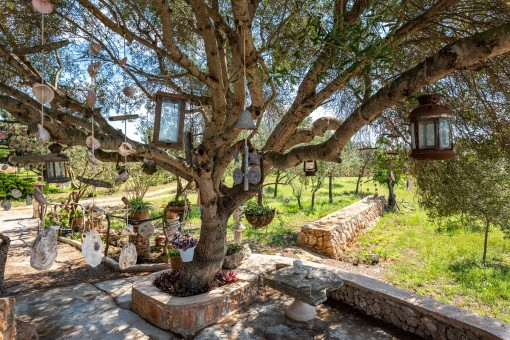 Charming outdoor area with many details