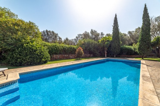 Large pool for summer days