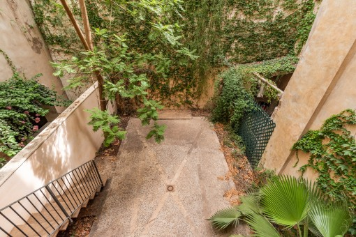 View and access to the own patio