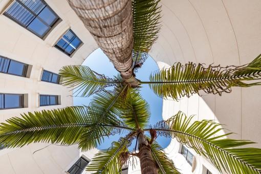 apartment in Puerto Andratx